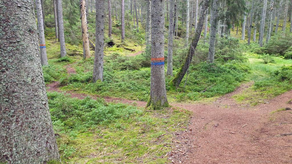 Djäknerundan, Karlsborg Tiveden - ledmarkering